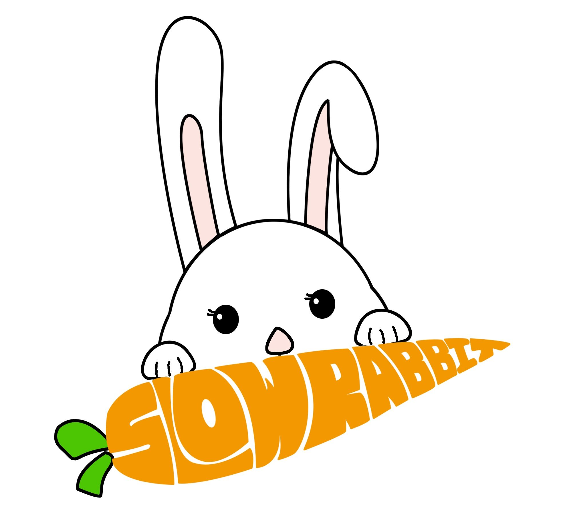 Slow Rabbit Chinese-English Books 慢兔双语童书